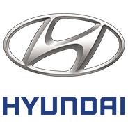 Hyundai Center Caps & Inserts